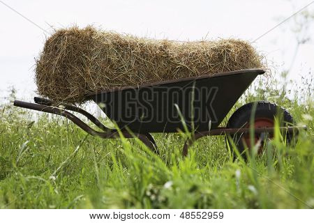 Side view of hay bale on wheelbarrow in field