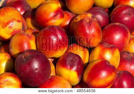 Nectarine pile