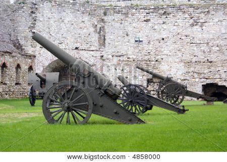 Grass And Guns
