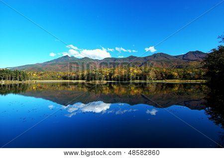 Red Leaves In The Shiretoko Five Lakes,shiretoko Goko,hokkaido,japan