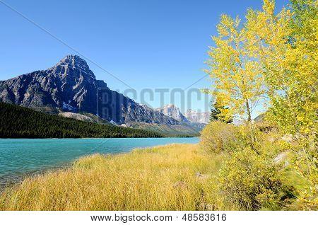 Waterfowl Lake In Autumn,canadian Rockies,canada
