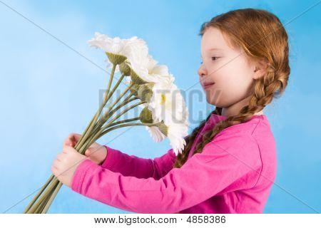 Blumen zu bewundern
