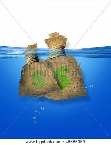 Money bags in water.