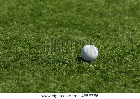 Lacrosse Ball On Grass 3