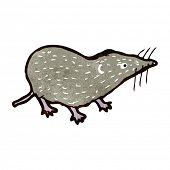 pic of shrew  - retro cartoon shrew - JPG