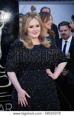 Adele at the 85th Annual Academy Awards Arrivals, Dolby Theater, Hollywood, CA 02-24-13