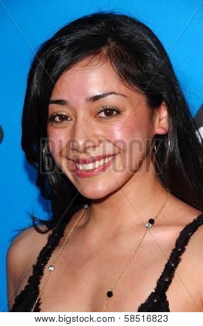 PASADENA, CA - JULY 19: Aimee Garcia at the Disney ABC Television Group All Star Party on July 19, 2006 at Kidspace Children's Museum in Pasadena, CA.
