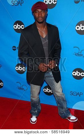 PASADENA, CA - JULY 19: Taye Diggs at the Disney ABC Television Group All Star Party on July 19, 2006 at Kidspace Children's Museum in Pasadena, CA.