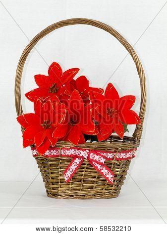 Poinsettias In The Basket On White Background