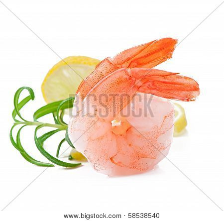 Tail of shrimp with fresh lemon and rosemary on the white