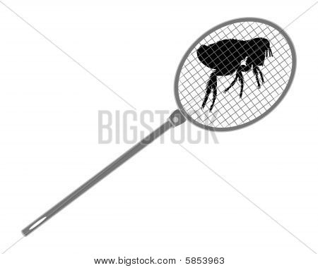 The Illustration Of A Gray Fly Swatter Above A Flea