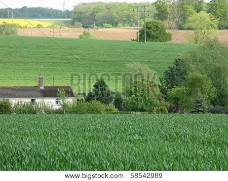 Fertile Farm Fields
