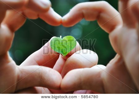 Little Cute Girl Holding Plant In Natural Shape Of Heart