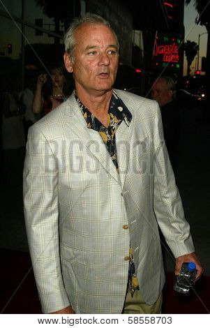 HOLLYWOOD - APRIL 17: Bill Murray at the Los Angeles Premiere of