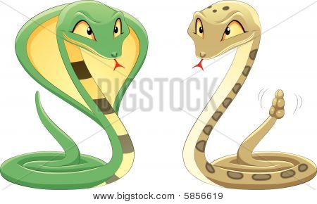 Two Snakes: Cobra and Pit Viper.