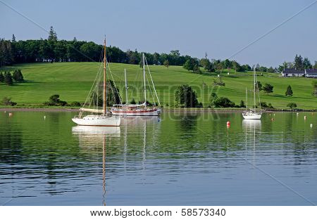 Harbor Of Lunenburg