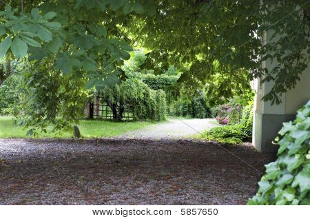Garden Path In Visby Sweden