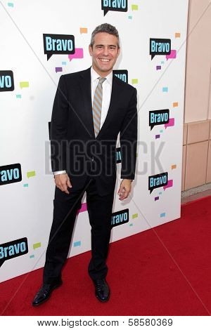 Andy Cohen at the Bravo Media's 2013 For Your Consideration Emmy Event, Leonard H. Goldenson Theater, North Hollywood, CA 05-22-13