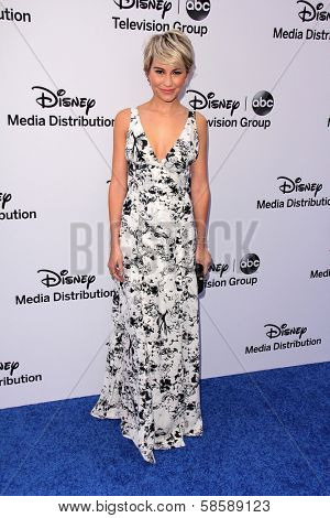 Chelsea Kane at the Disney Media Networks International Upfronts, Walt Disney Studios, Burbank, CA 05-19-13