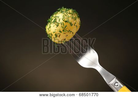 Young boiled potato on fork on dark background