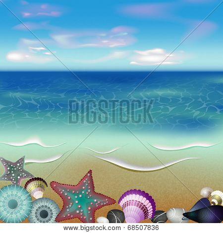 sea inhabitants on a beach sand