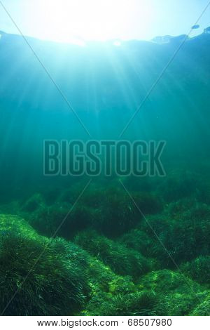 Underwater background photo
