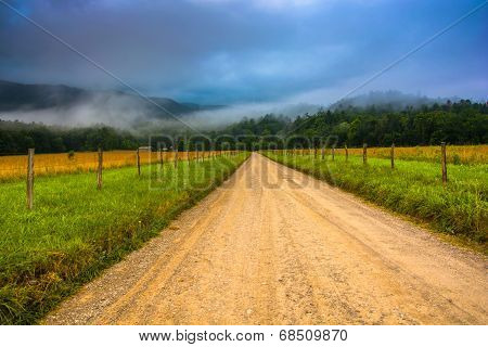 Dirt Road And Fog In Cade's Cove In The Morning, At Great Smoky Mountains National Park, Tennessee.