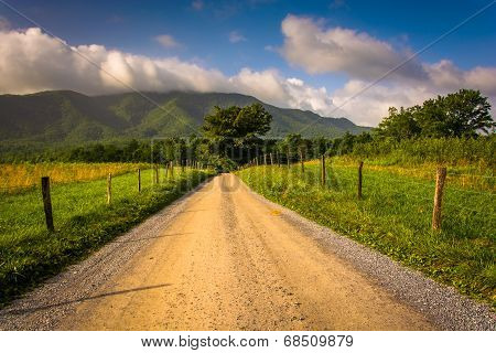Dirt Road At Cade's Cove , Great Smoky Mountains National Park, Tennessee.