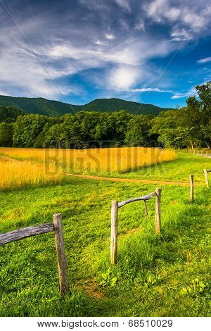 Fence And Field At  Cade's Cove, Great Smoky Mountains National Park, Tennessee.