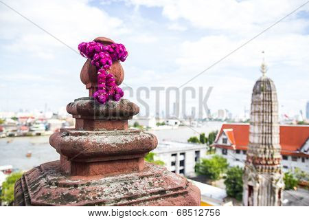Lobe Amaranth Or Bachelor Button On Wat Arun Temple