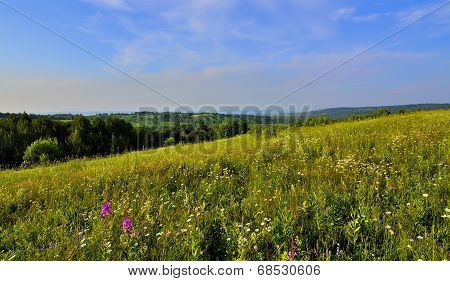 Panoramic View Of Beautiful Summer Landscape