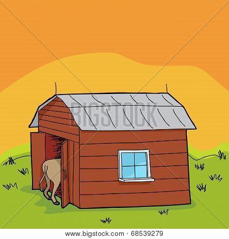 Rural Animal In Barn