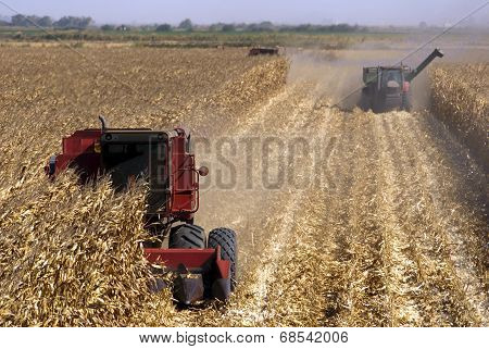 Combines Harvests Corn
