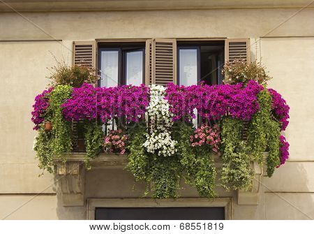 Balcony Decorated With Flowers Petunias