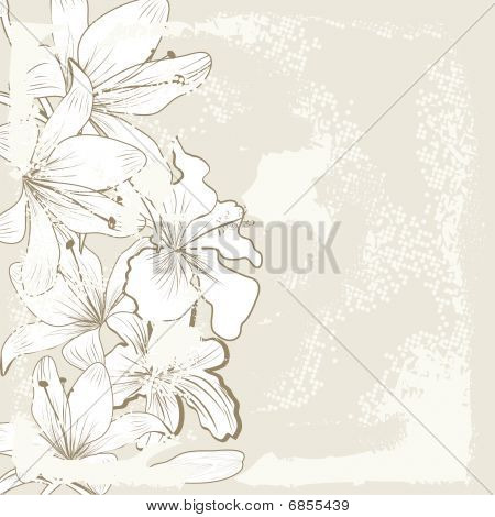Retro stylized baskground with white lily flowers