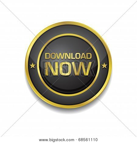 Download Now Glossy Shiny Circular Vector Button