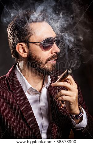 Portrait Of Handsome Man In Casual Dress Smoking A Cigar