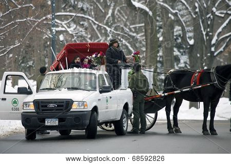 Horse Drawn Carriage Lady Argues With Park Enforcement