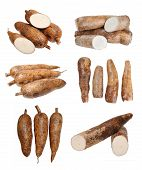 picture of cassava  - chopped and whole manioc  - JPG