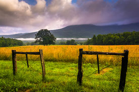 stock photo of cade  - Fence and low clouds over mountains at Cade - JPG