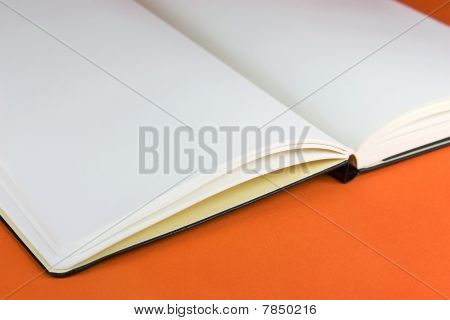 Moleskin On An Orange Background
