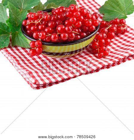 red currant green bowl isolated