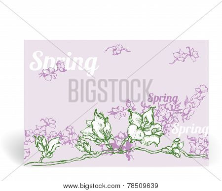 Spring Card With Flowers