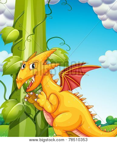 Illustration of a dragon and bean stalk