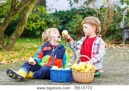 Two Funny Little Boys Feeding Each Other With Apple