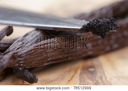 Vanilla Pod On Olive Board With Beans On Knife