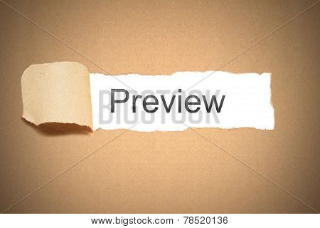 Brown Paper Torn To Reveal Preview