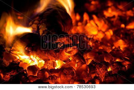 Burning Down Fire Wood