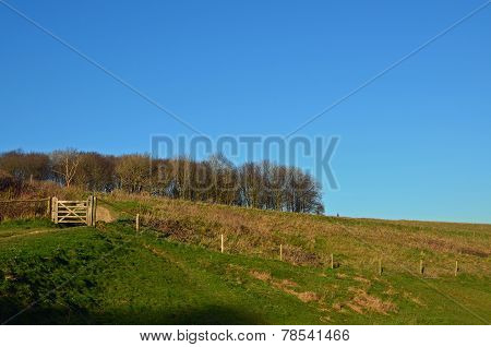 Wood gate on Devil's Dyke.