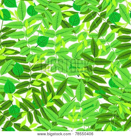 Floral pattern with leaves and foliage